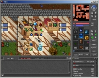Tibia - Screenshot Fantasy Classico